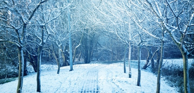 How to organize Winter: Dry skin care in winter
