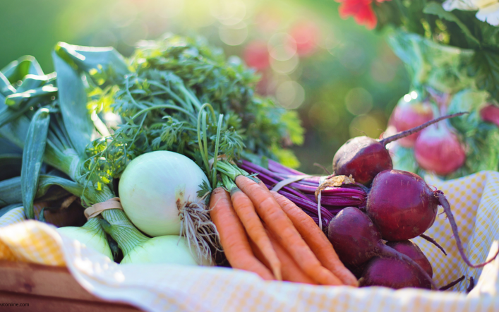 How can you tell if vegetables are fresh?